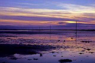 pilgrims sunset