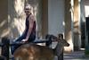 Letaba Rest Camp (Eden Fontes) Tags: krugernationalpark southafrica mammals mamíferos safaridrive limpopo áfricadosul tragelaphussylvaticus balulenisafarilodge bushbuck phalaborwa imbabala deby