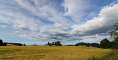 Summer landscape   EXPLORED 29.8.2017 (K. Haagestad) Tags: rural scenery sky clouds field trees
