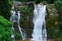 Ramboda Falls - Sri Lanka (Dunstan Fernando) Tags: dunstan dunstanphotography srilanka ramboda rambodafalls rambodafallssrilanka waterfall nature outdoor nikon longexposure