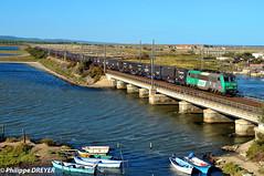 BB26192 sur train Calais Cerbère vers Port la Nouvelle (philippedreyer1) Tags: