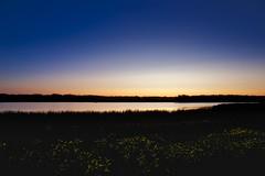 Sunset in September (John Andersen (JPAndersen images)) Tags: alberta birds bonaccord canola clouds darksky equinoxfestival2017 migration milkyway sandhillcranes sunset
