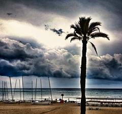Let's go to the beach?...🌴🌊 (carlesbaeza) Tags: playa platja beach tempesta tormenta lluvia storm rain ngc travel catalunya catalonia
