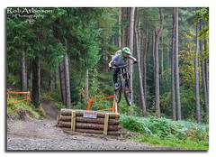 high jump (R0BERT ATKINSON) Tags: hamsterleyforest mountainbiking downhillmountainbiking trees jump robatkinsonphotography nikond5100 durham northeastengland