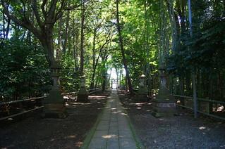 夏の喜多見氷川神社