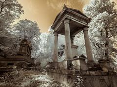 Figgins vs Allen (Adventures in Infrared) (Torsten Reimer) Tags: nunhead memorial friedhof europa nunheadcemetery cemetery bäume unitedkingdom grass grabsteine infrared graveyard trees graves olympusepl5 england london grabmal europe uk infrarot gb