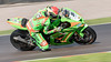 British Super Bikes #5 Adam Westmoreland (dave.mcculley) Tags: motorsport panning oultonpark britishsuperbikes adamwestmoreland 5 speed motorracing championship bsb kawazaki gearlink freepractice