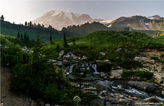 Edith Creek, Mount Rainier (geoff_sharpe) Tags: mount rainier national park wildflowers waterfalls