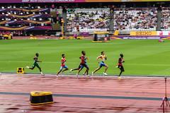 World Athletics Championship 2017 - London Olympic Stadium (phil_king) Tags: iaaf world championship championships worlds athletics 2017 london sport olympic stadium england uk