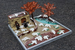 My Latest Build (Elijah Chamberlain) Tags: lego legos medieva build moc builds mocs knights game thrones lord rings hobbit dwarves fight fighting landscape snow water river tree house building shack brick bricks peach peachbricks lea leaves fence pathway road