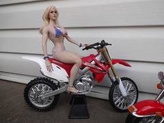 DSC02791 (earlwhicker) Tags: motorcycle bike phicen tbleague 16scaleactionfigures