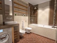 Дизайн интерьера квартиры | ванная комната