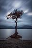 Milarrochy  Bay  CV (davidballantyne2) Tags: longexposure lochlomond leefilters bigstopper scotland fujifilmxt2 milarrochytree milarrochybay