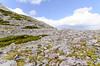 Rocks (Josh Thompson) Tags: d7000 lakestrail medicinebownationalforest rocks sigma1020mmf456exdc wyoming lightroom5