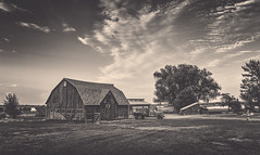 Colorado farm (andy_8357) Tags: colorado farm landscape monotone old barn vintage truck sony a6000 alpha ilce6000 6000 e pz 1650mm sel1650 selp1650 ilcenex sky monochrome blackandwhite bw blancoynegro blancetnoir blanc et noir blanco y negro mirrorless oss