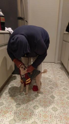Fixing Kai's hoodie