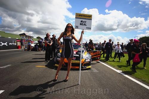 Matt Neal on the BTCC grid at Snetterton, July 2017