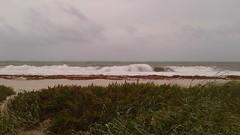 20170909_094558 (immrbill3) Tags: beach florida fortlauderdale ftlauderdale floridabeach ocean