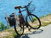 Fishing Bikes, September 2017 (wildukuleleman) Tags: fishing bike bicycle cape cod canal bourne massachusetts fish ma wildukuleleman