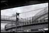 Tokyo Metropolitan Area: Impressions of a great city (Matthias Harbers) Tags: panasonic dmctx1 photoshop elements topaz tokyo metropolitan lumix zs100 tz100 living bw black white monochrome city street life impression blackandwhite photo border tree car classic japan hdr photomatix 3xp yokohama photographer