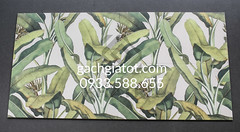 Bộ gạch ốp Tropical Banana (30x60cm)