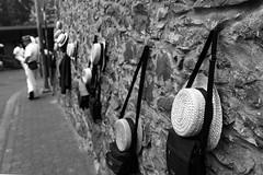 _MG_5938_2223.jpg Maderia 2016 (ronniefleming@btinternet.com) Tags: ronnieflemingdrumpellierml51ry blackwhite leadinglines maderia wall nail hats