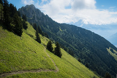 Rando Leysin-50 (ticoutouc) Tags: countries landscapes leysin montagne nature rando sport suisse vaud switzerland ch