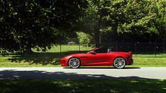 Jaguar F-Type 2 (Arlen Liverman) Tags: exotic maryland automotivephotographer automotivephotography aml amlphotographscom car vehicle sports sony a7 a7rii jaguar f type