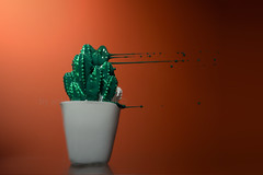 dedicato al caldo... (Antonio Iacobelli (Jacobson-2012)) Tags: caldo hot cactus splash acrylic color green orange bari nikon d800 nikkor 60mm
