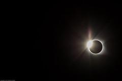Diamond Ring 2017 (Kathleen Muhle) Tags: 201708solar 82117 eclipse totality 2017 kathleenmuhle