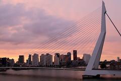 """Erasmus Bridge Rotterdam_MG_2923 (horn.mats) Tags: holland netherlands erasmus brücke bridge abend evening stadt city wolken clouds himmel sky abenddämmerung dusk dawn canon eos 7 d """"canon 7d"""" ef 24105mm 14 l is ii usm """"canon usm"""""""