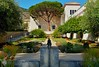 Under A Spreading Olive Tree (MPnormaleye) Tags: getty villa museum galleries utata 24mm tree landscaping design patterns fountain california photomatix