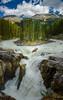 Sunwapta Falls (Petr Smida) Tags: jasper national falls alberta mountains noon park midday sunwapta canada