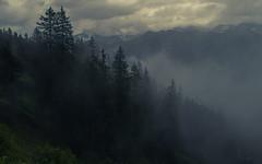 Fog in the Alps (Netsrak) Tags: wolke wolken baum bäume berge gebirge alpen landschaft natur