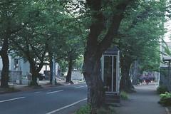 A morning (しまみゅーら) Tags: minolta mactele qd 38mm f28 80mm f56 kodak ultramax 400