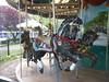 Black Carousel Horse (smaginnis11565) Tags: carousel merrygoround carouselhorse militarypark newark newjersey essexcounty chambersfamilycarousel