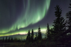 Summer's night with the Aurora (Adam Hill Photo) Tags: aurora northernlights north canada canon northwestterritories auroraborealis