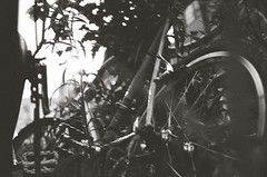 Call (Yosh the Fishhead) Tags: olympus olympus35dc 35dc 40mm film bw blackwhite blackandwhite monochrome foma fomapan200 pushprocess pushprocessed tokyo japan bike bicycle wheel dof bokeh
