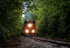 Cincy Tree Tunnel (Wheelnrail) Tags: crc cincinnati railway io indiana ohio train trains locomotive rails emd blue ash flyer gp30 subdivision passenger rail road tree metro