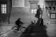 Weekly theme: Bicycle - 7 (gezimania) Tags: streetphotography sokakfotoğrafciligi sokak street bw siyahbeyaz blackandwhite gölge shadow humaningeometry bologna piazzamaggiore square