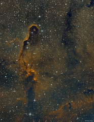 The  Elephant's Trunk Nebula (Martin_Heigan) Tags: ic1396 astronomy astrophotography astroimaging amateurastronomy martin heigan telescope newtoniantelescope astrograph gso qhyccd qhy163m cooledcmos coldmos qhycfw2mus polemaster celestronavx advancedvx orionstarshootautoguider phdguiding optolongfilters 65nm 7nm 656nm 672nm 5007nm monochrome astronomycamera fitsformat scientificcamera pixelmath wavelengthsoflight narrowband sho ha oiii sii o2 halpha hydrogenalpha oxygeniii sulphurii spectralline widefield dso hst hubblepalette doublyionisedoxygen universe sgp sequencegeneratorpro pixinsight pi photoshop science physics light cosmos deepsky space southafrica 2017 southernhemisphere mhastrophoto nebula oii siii abstract pillarofdust faintlight capturingphotons gasanddust starstuff mappedcolor