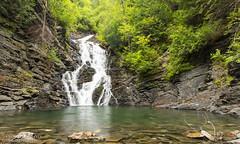 Chute près du lac de l'Anse-Pleureuse (Pierre Lemieux) Tags: québec canada ca ansepleureuse chute fall gaspésie water river waterfall