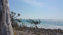 Noosa National Park (Gillian Everett) Tags: noosa nationalpark queensland 365 2017 mdpd2017 mdpd201709 explore explored