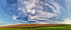 IMG_4929-32PRtzl1TBbLGER3 (ultravivid imaging) Tags: ultravividimaging ultra vivid imaging ultravivid colorful canon canon5dmk2 clouds fields farm landscape scenic panoramic pennsylvania pa vista rural mist lateafternoon latesummer