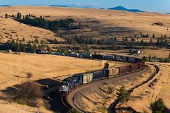 Night Gas (shawn_christie1970) Tags: missoula montana unitedstates us mrl4408 gas evarohill mrl mrl4406 sd70ace emd train