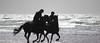 ww17-51 (kevan r) Tags: horses beach waves silhouette