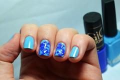 Esmaltação das corujas: splatter nails :( (Raíssa S. (:) Tags: blue azul esmalte unhas nails cremoso creamy hits safira nailpolish naillacquer nailart nailpainting corujas