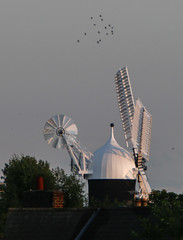 Distant view of Holgate Windmill at sunset - 3