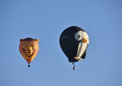 Lion chasing slightly worried looking Penguin! (Nige H (Thanks for 10m views)) Tags: balloon hotairballoon lion lionballoon penguin penguinballoon longleat longleatskysafari wiltshire