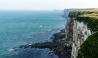 Bempton Cliffs  (explored 27/9)   wow thanks
